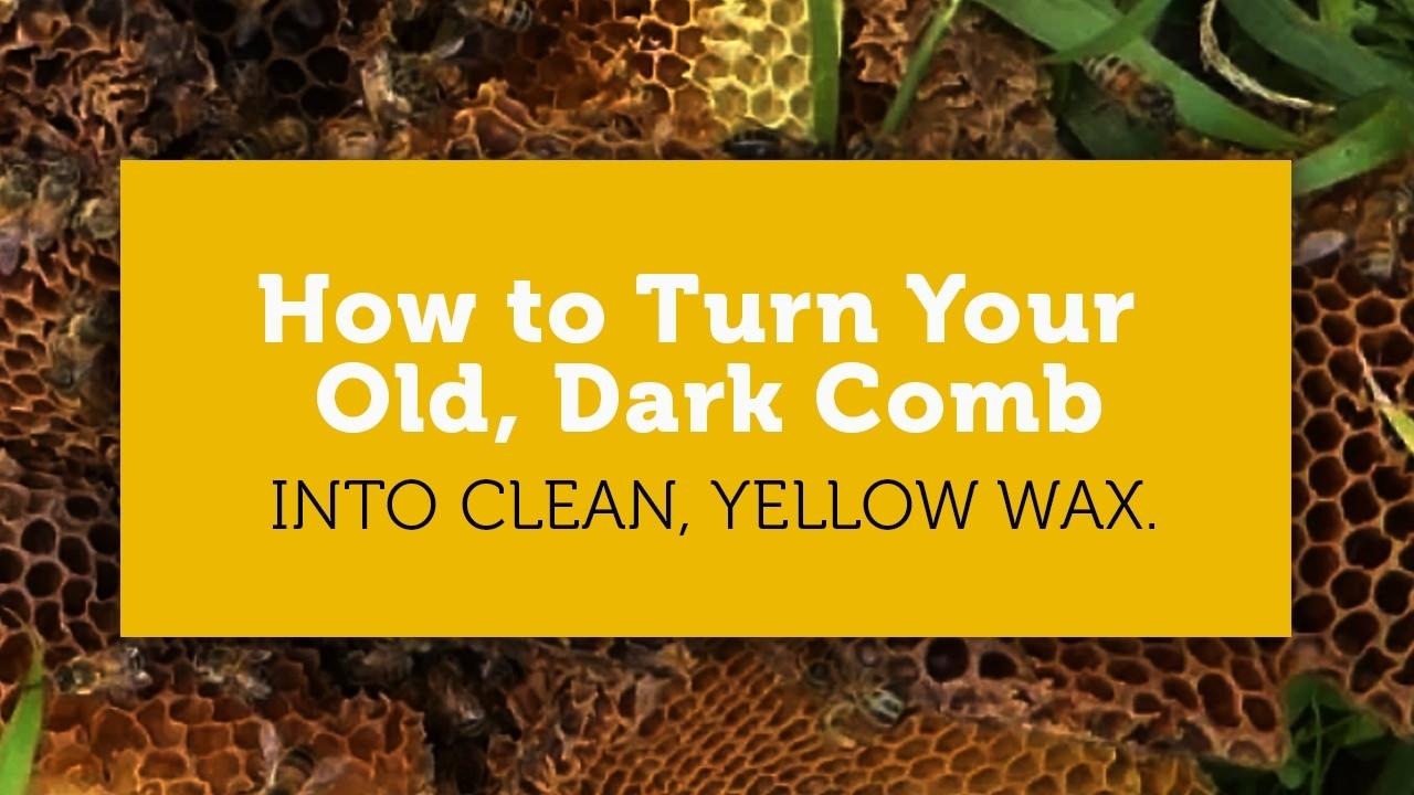 how to turn old dark honeycomb into clean wax blog title image