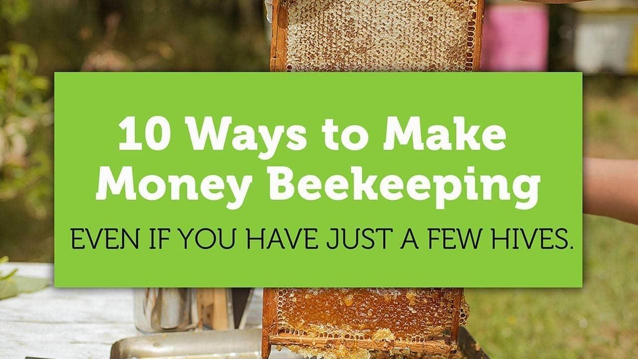 10 ways to make money beekeeping blog title image