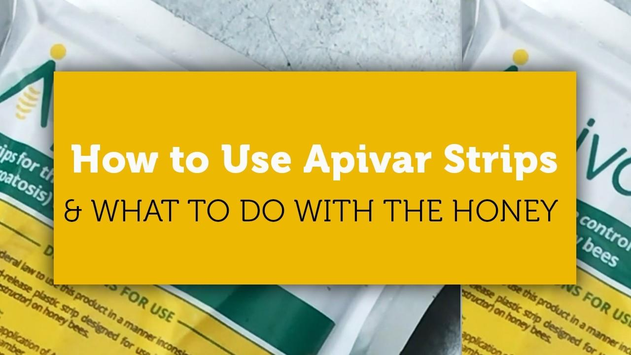 how to use apivar strips blog title image
