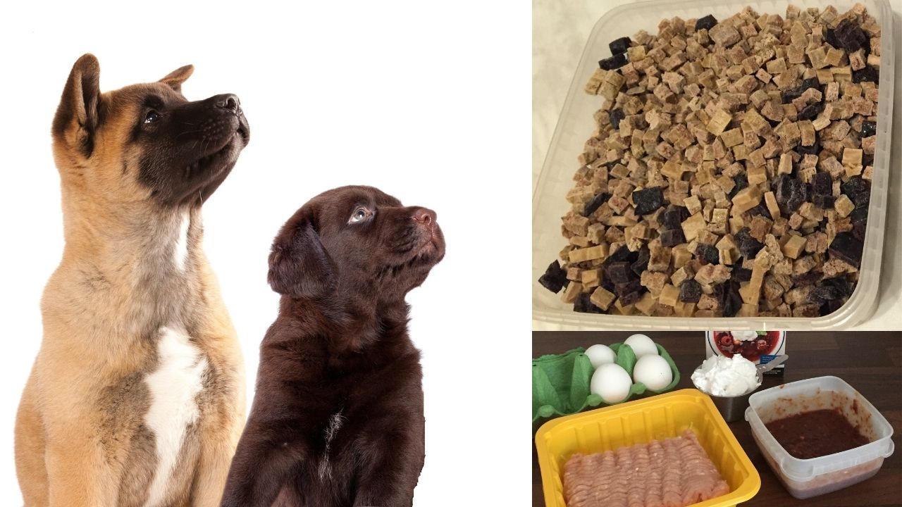 Maistuvat koulutusherkut koiralle