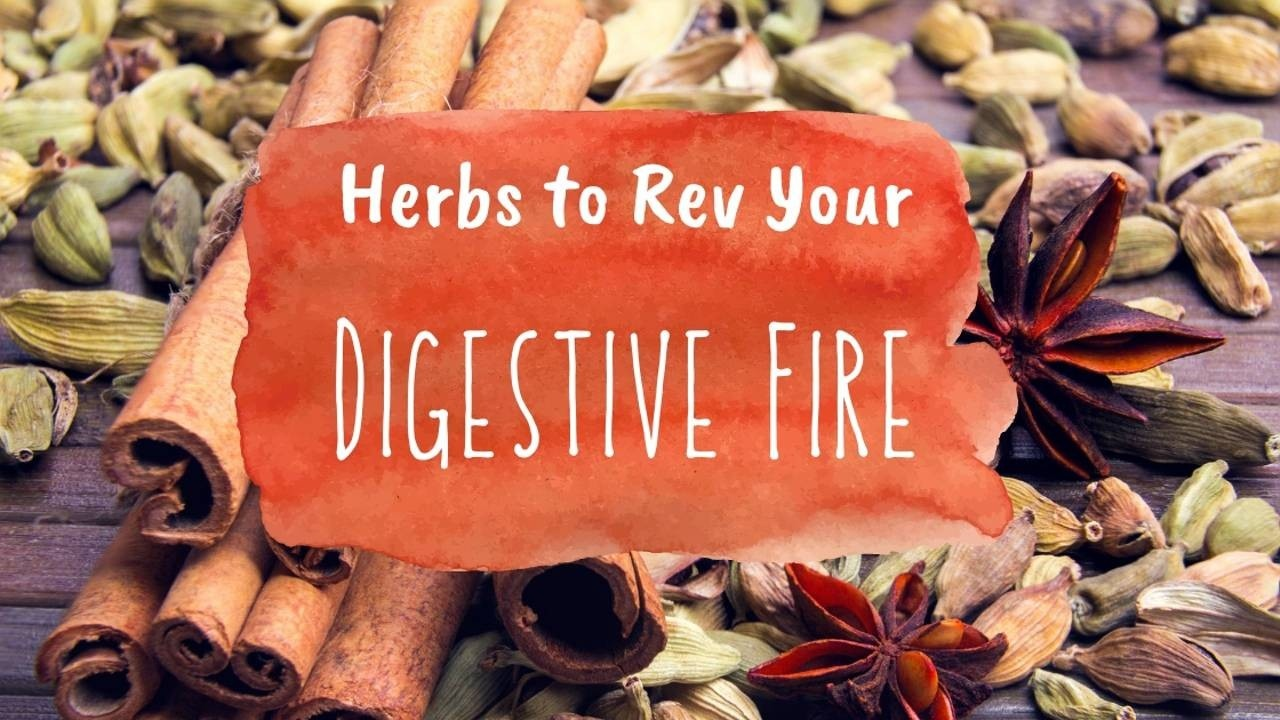 cardamom, cinnamon and star anise on a wooden table with a red-orange watercolor spot and the words 'Herbs to Rev Your Digestive Fire'