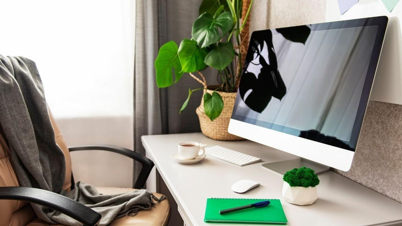 Home office desk with monitor, two plants, and a green notebook