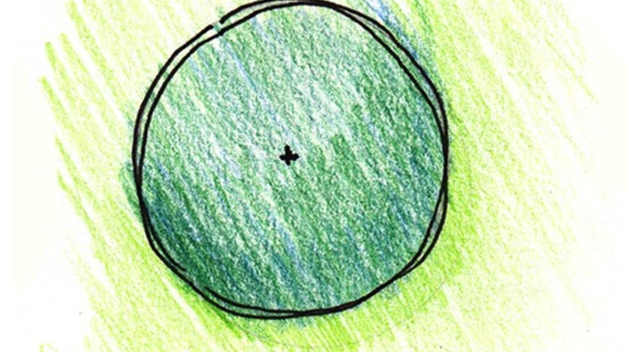 plant symbol rendered in color pencil