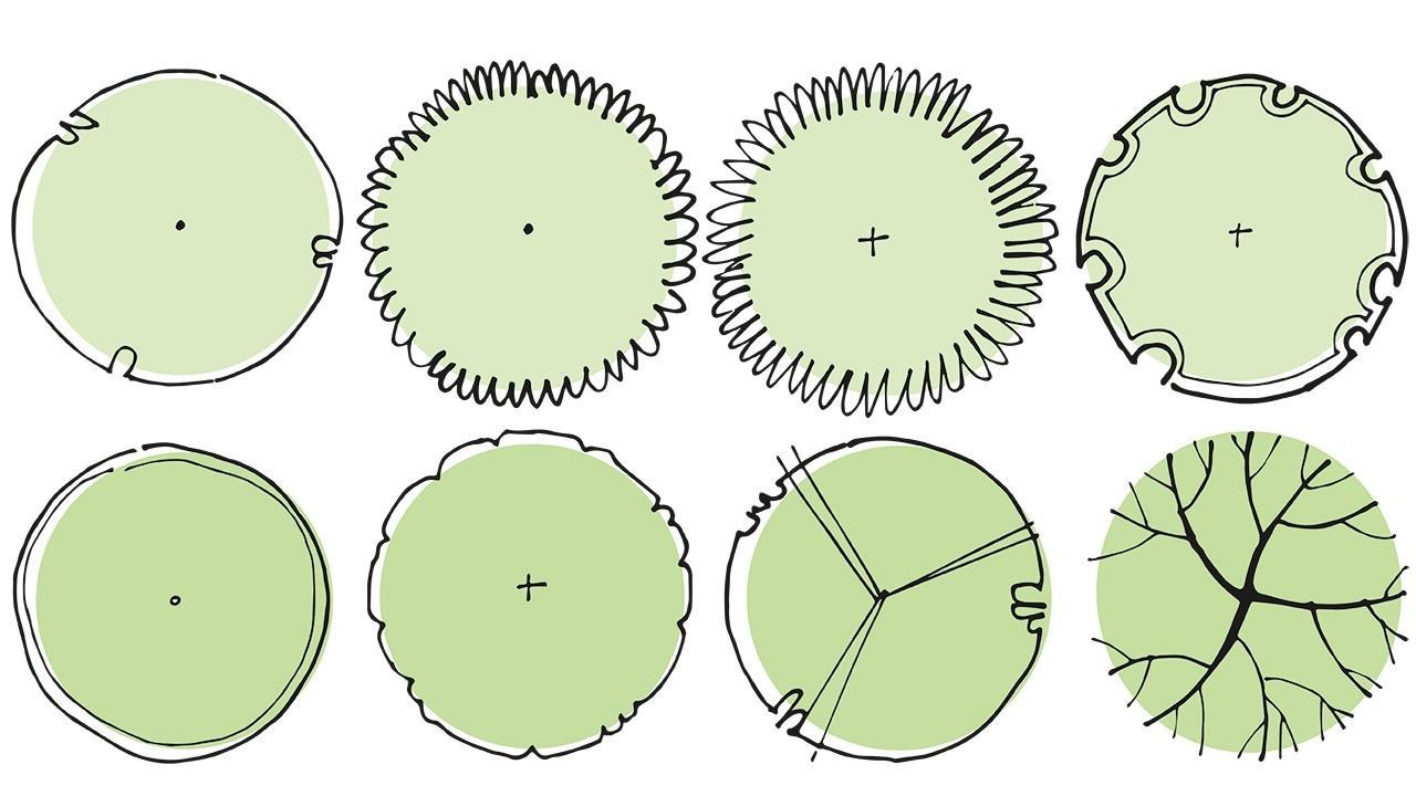 plant symbols