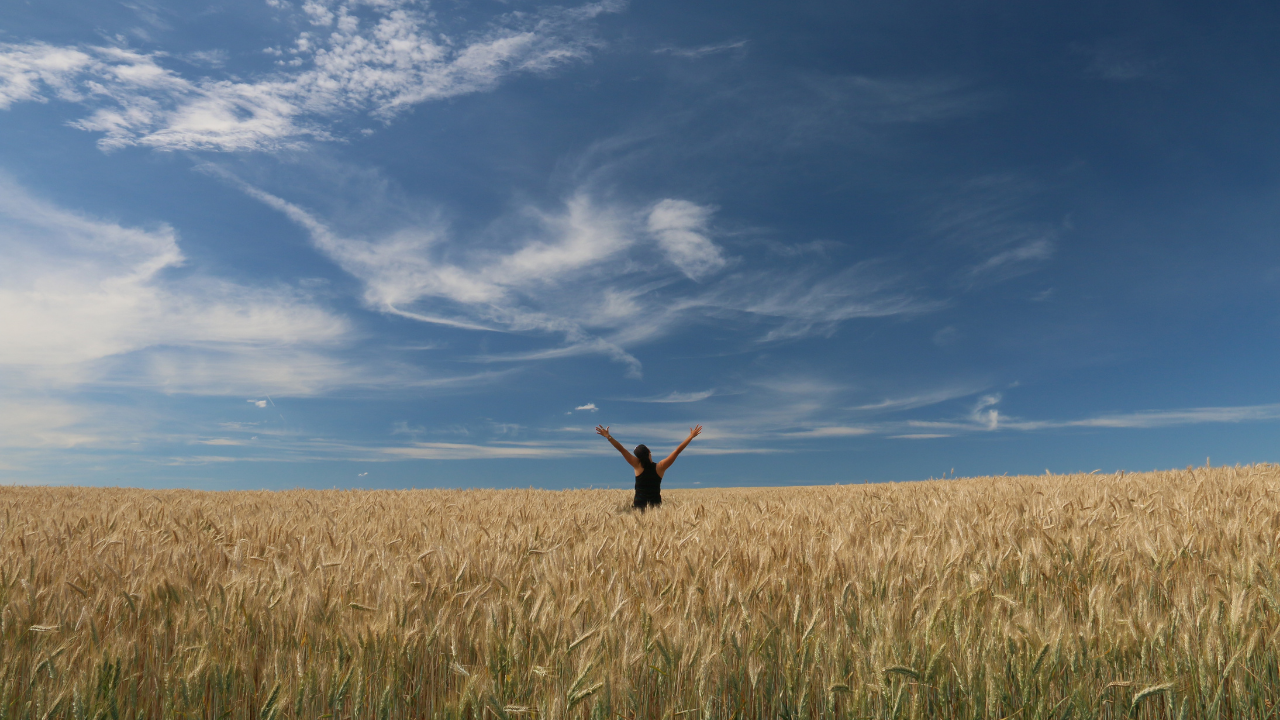 person with arms raised in a sunny field