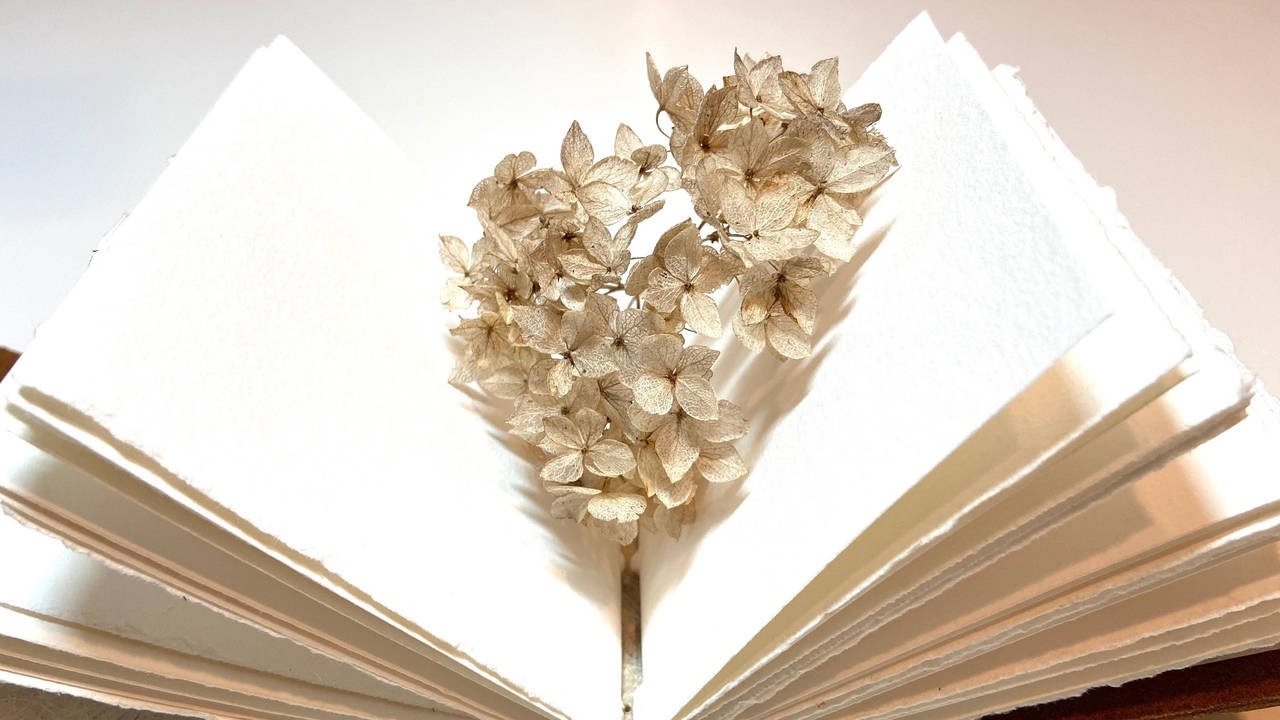 open journal with flower