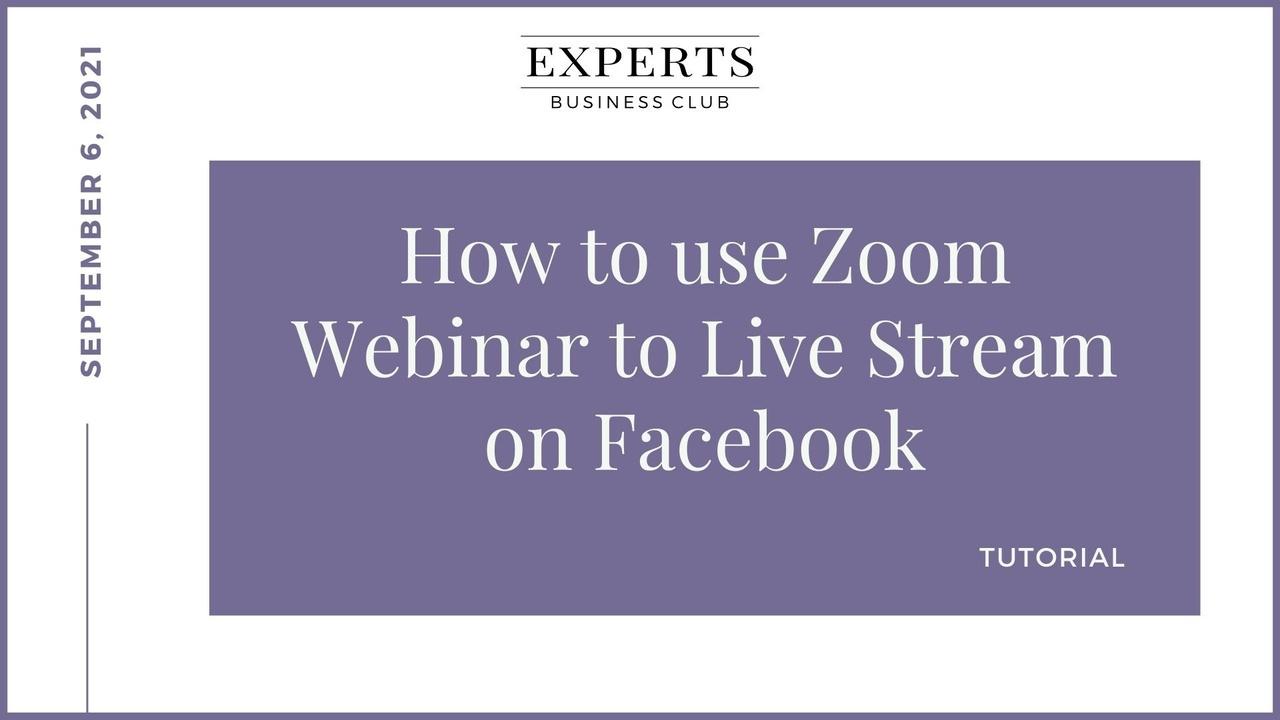 Zoom Webinars & Meetings