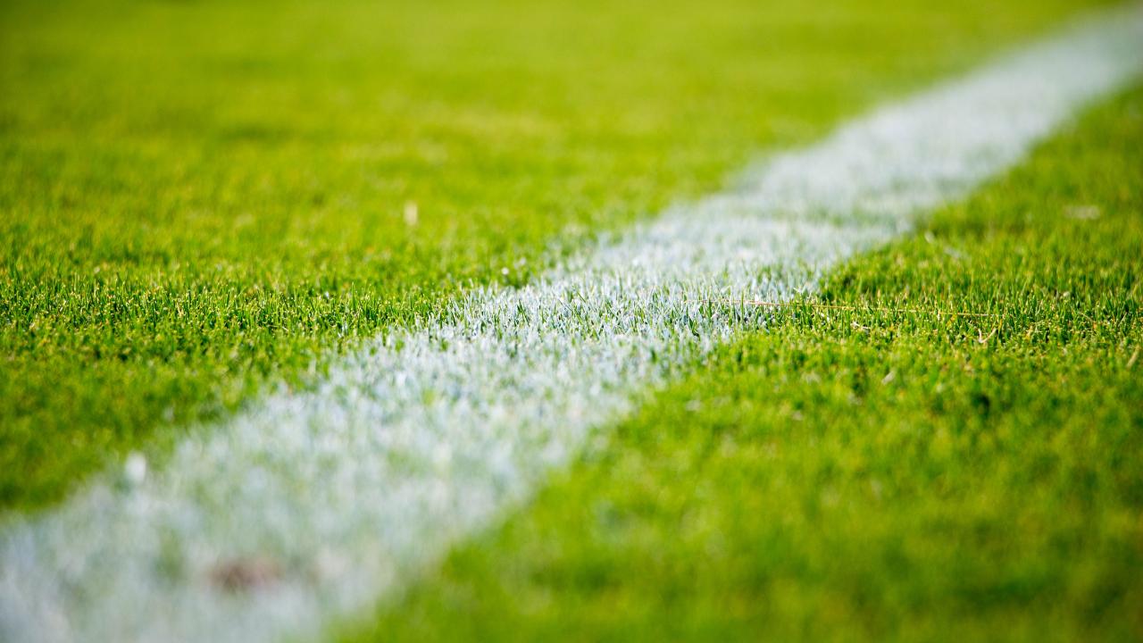 line drawn on sports field