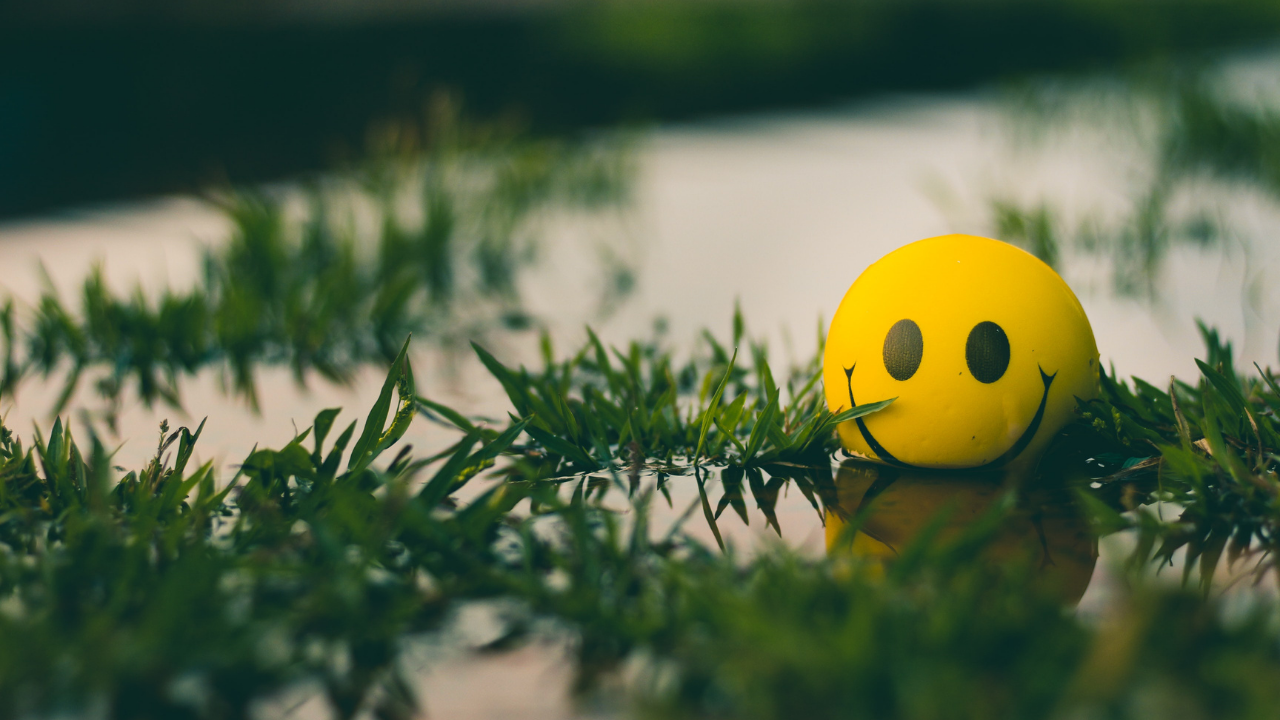 image of happy face in a puddle