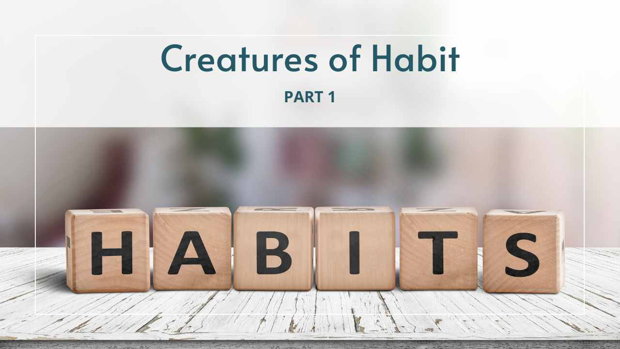 Creatures of Habit blog image