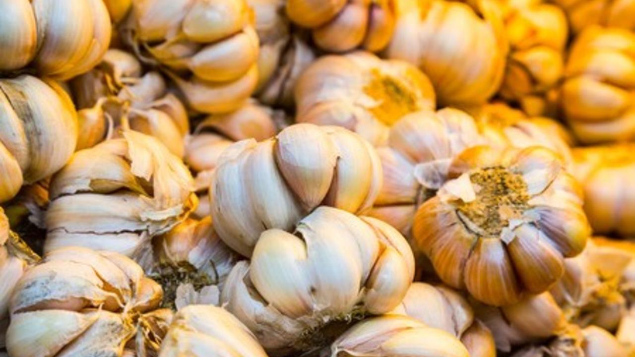 Garlic garlic for nourishing and stimulating your immune system