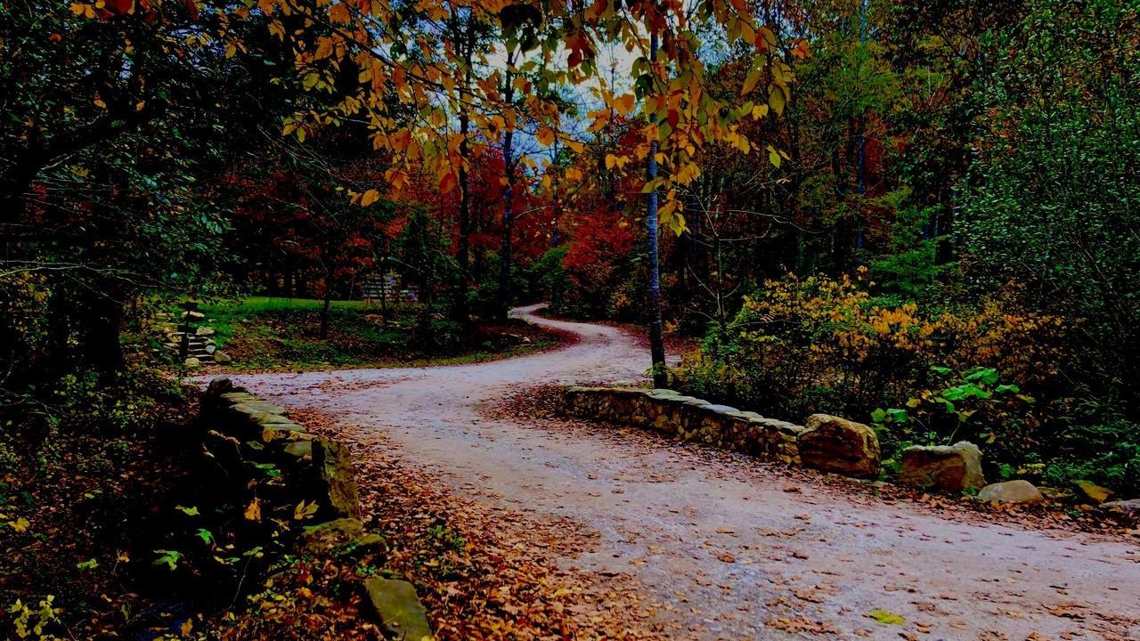 As she moves through autumn a woman feels...