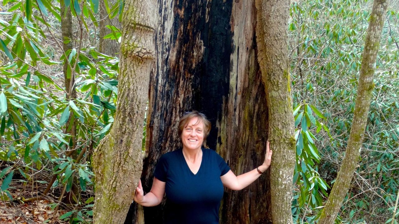 Corinna Wood, director Southeast Wise Women, on menopausal metamorphasis