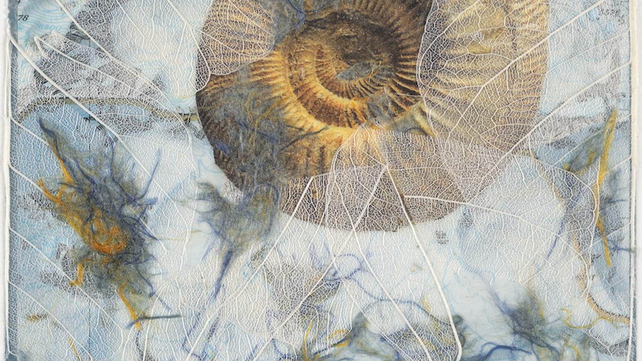 Artwork by Theresa Esterlund. Nautilus. 2012.