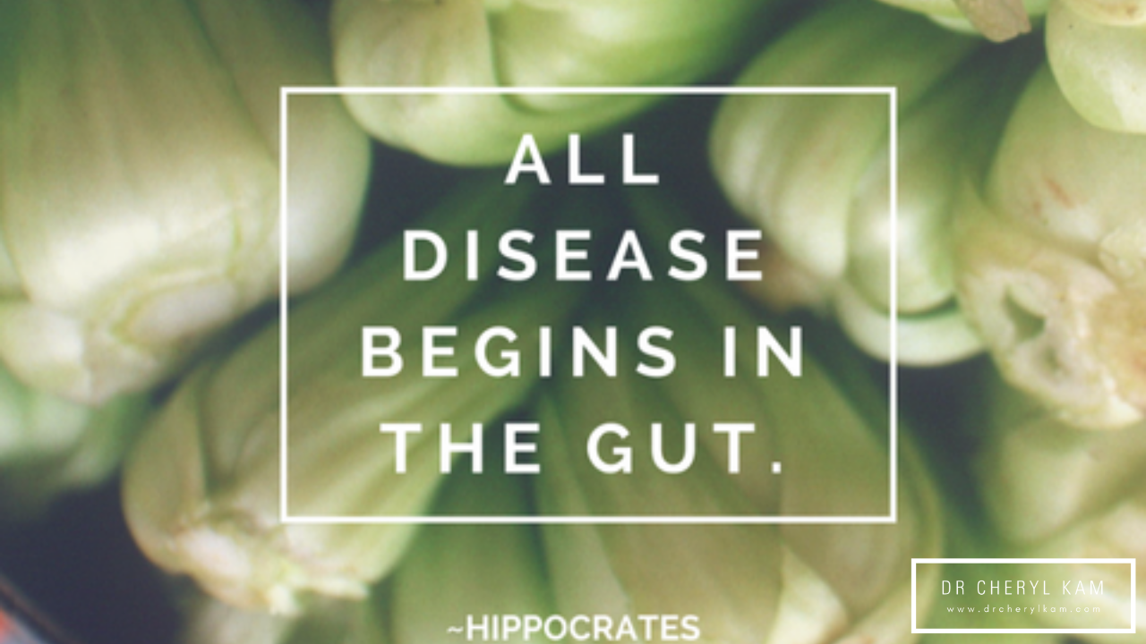 Dr Cheryl Kam - Blog - Functional medicine coach - Singapore - Digestive health! 5 ways to Heal Your Gut