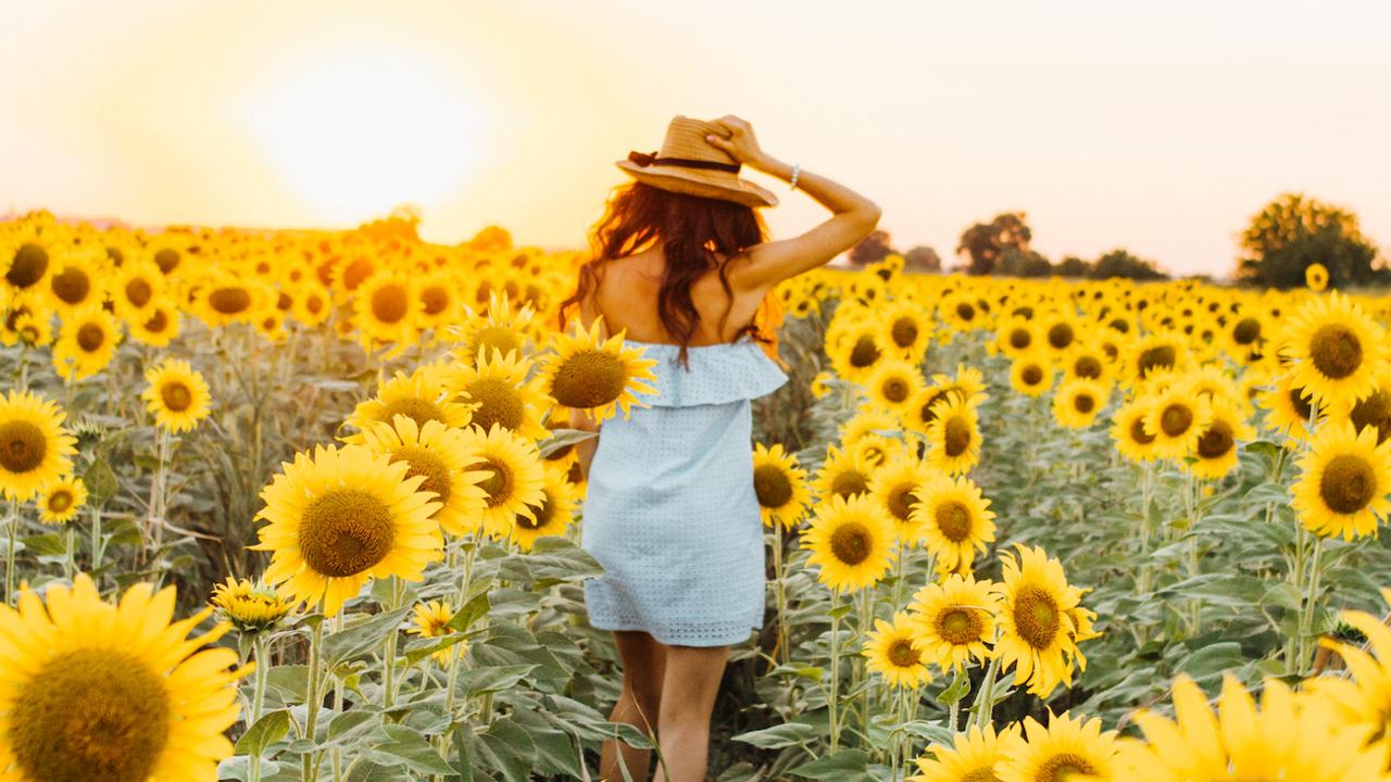 Nuori hattupäinen nainen auringonkukkapellossa.