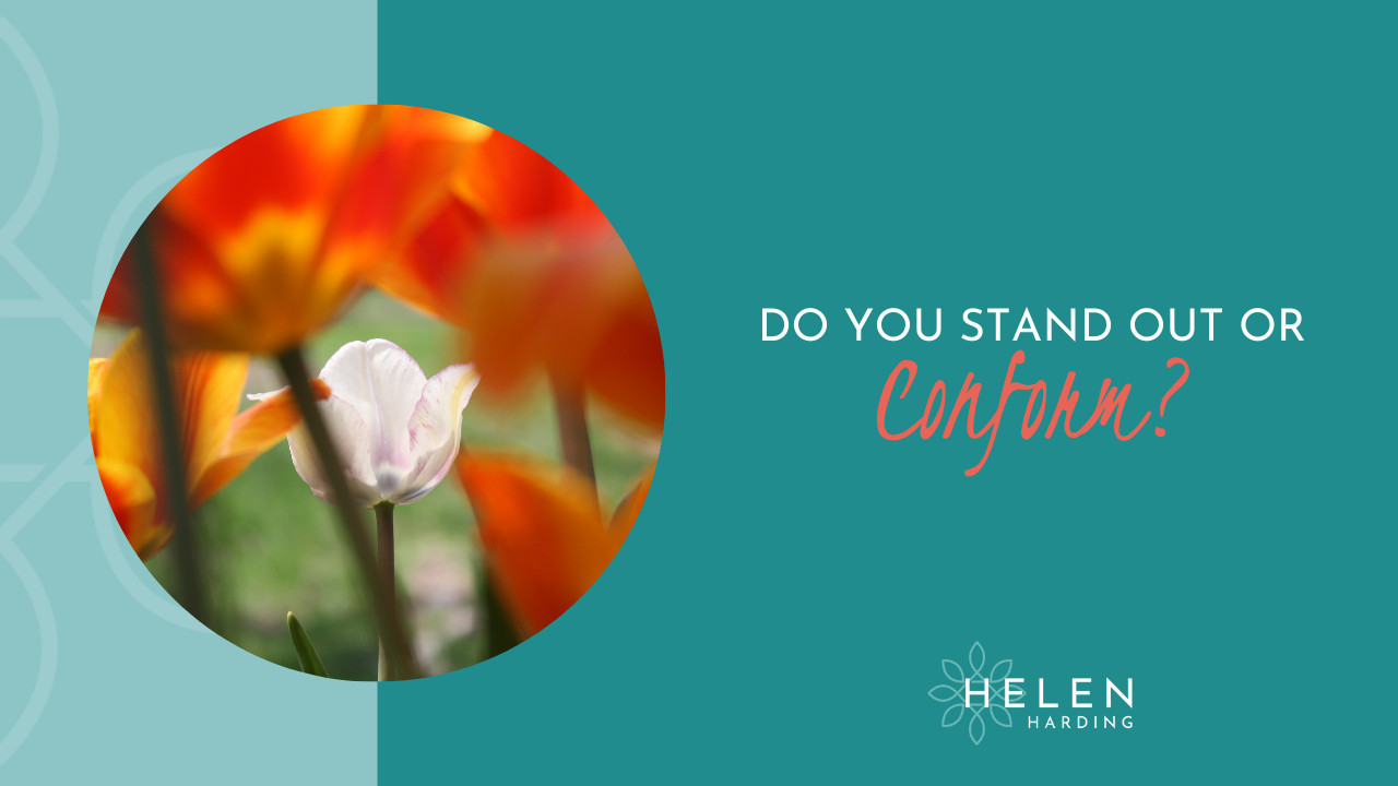 To Stand Out or Conform