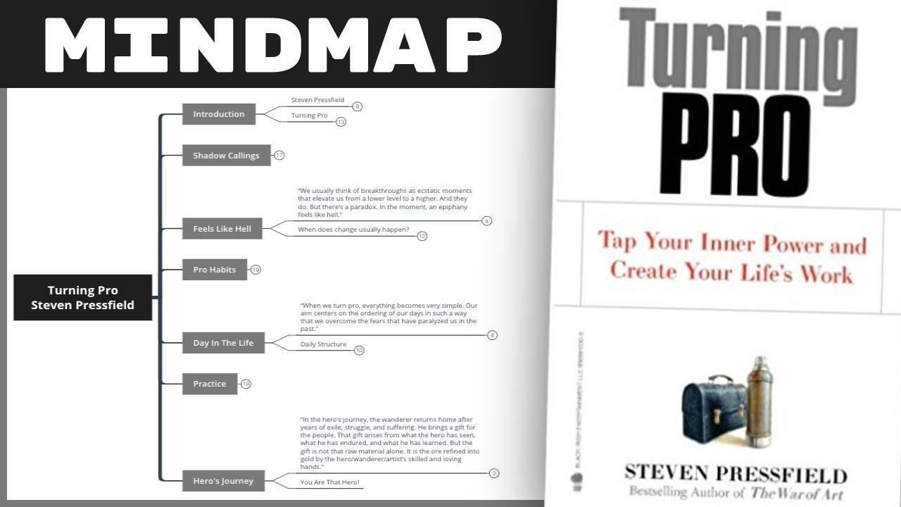 Turning Pro - Steven Pressfield Summary
