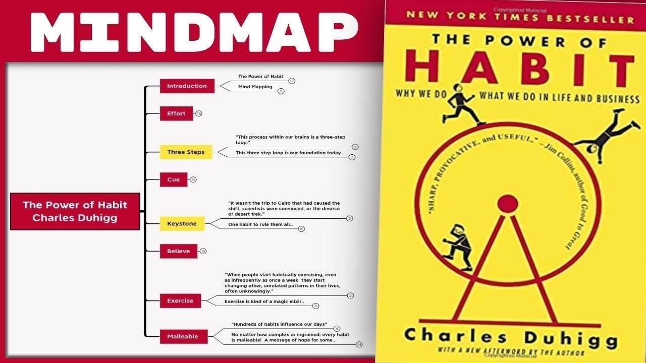 The Power of Habit - Charles Duhigg Summary