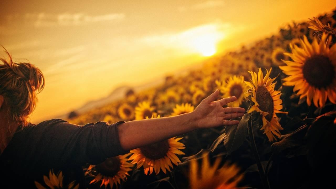 Woman stands open armed in field of sunflowers as the sun sets - freedom to be ourselves and freedom to speak our truth