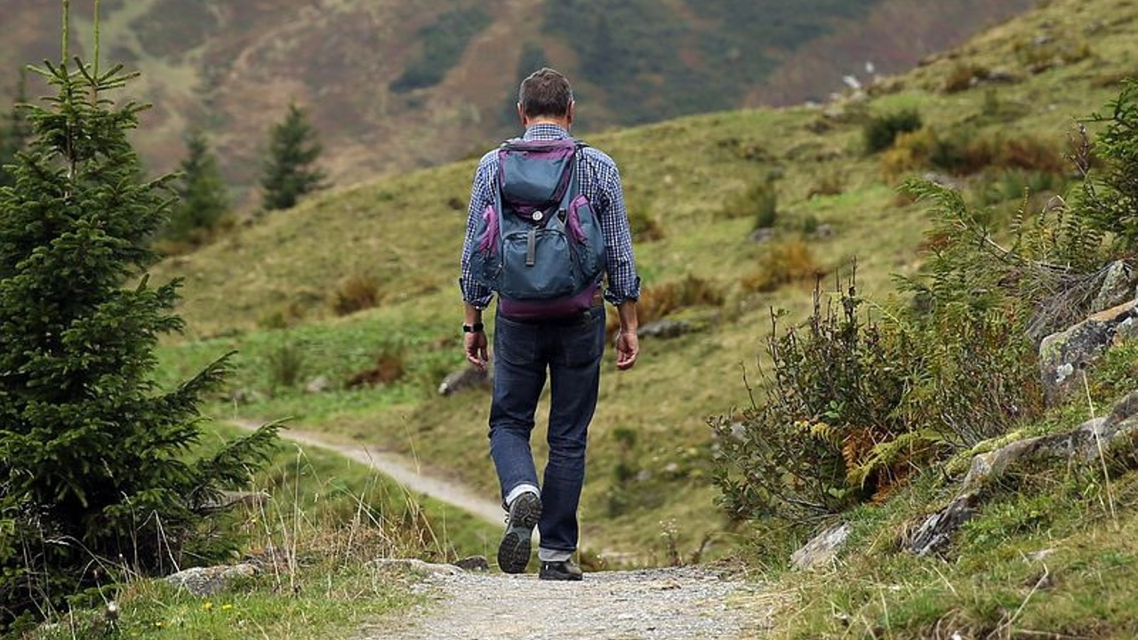 Finding the right path-will coaching or will counselling best suit me?lling