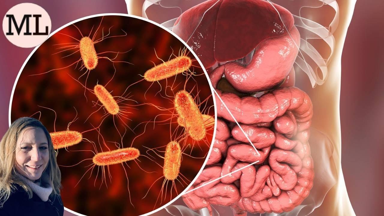 Microbiome Gut Health