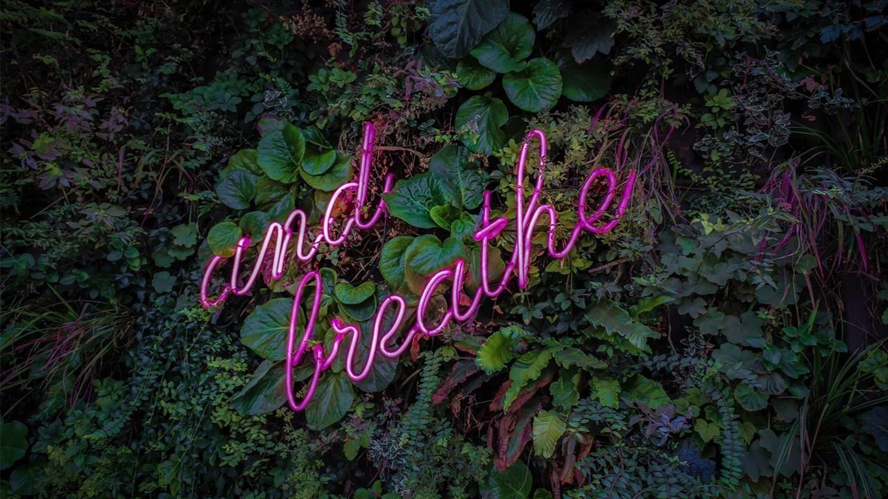 Thrive with Duff Beginner Breath Work