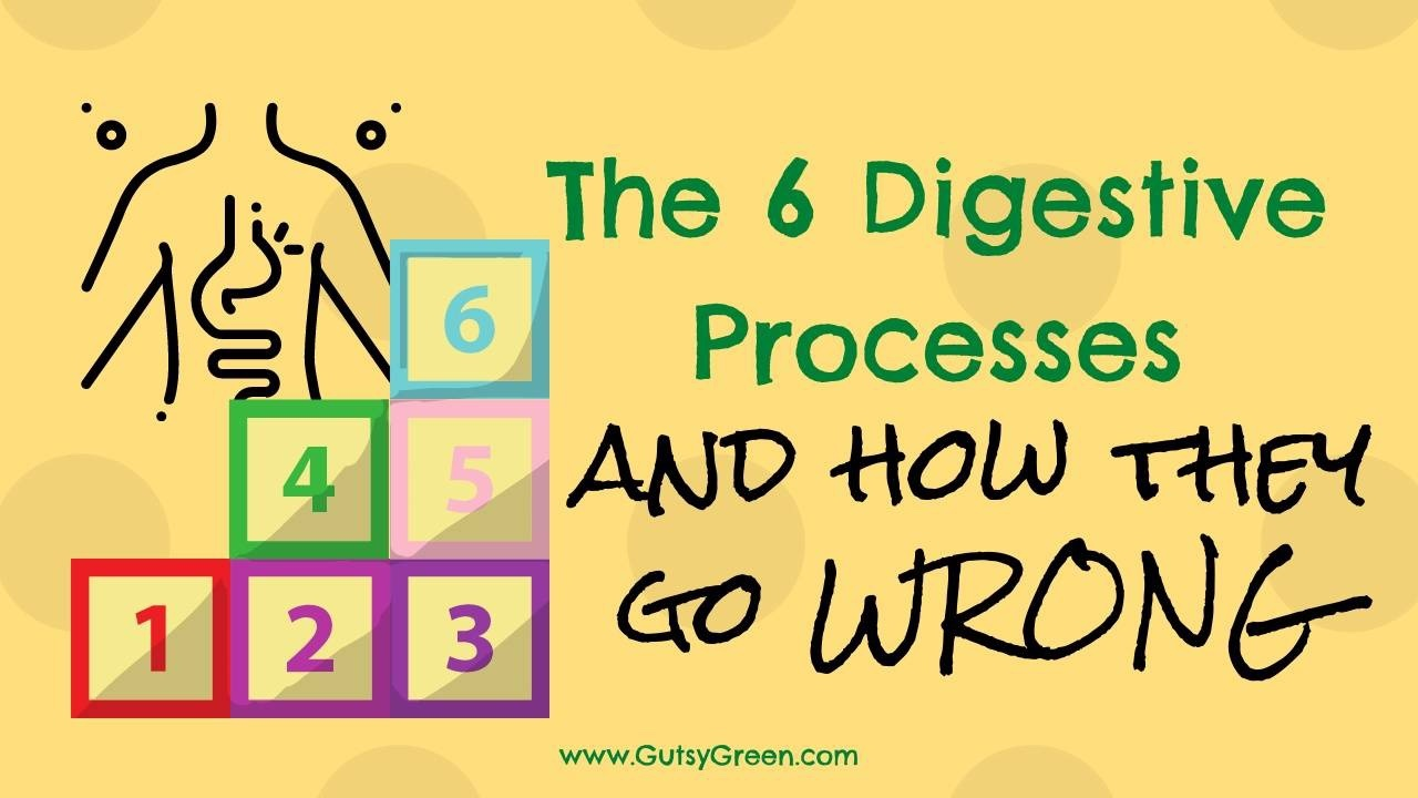 how digestion goes wrong