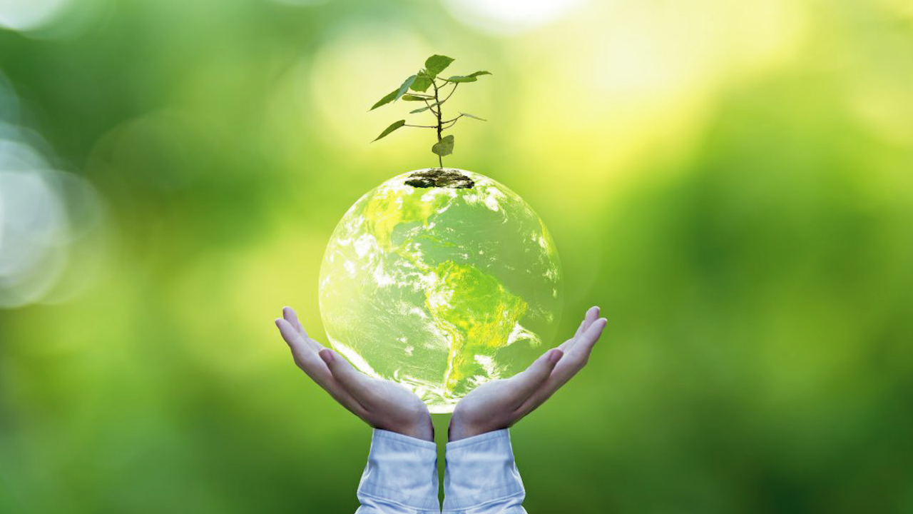 Planet and tree in human hands over green nature