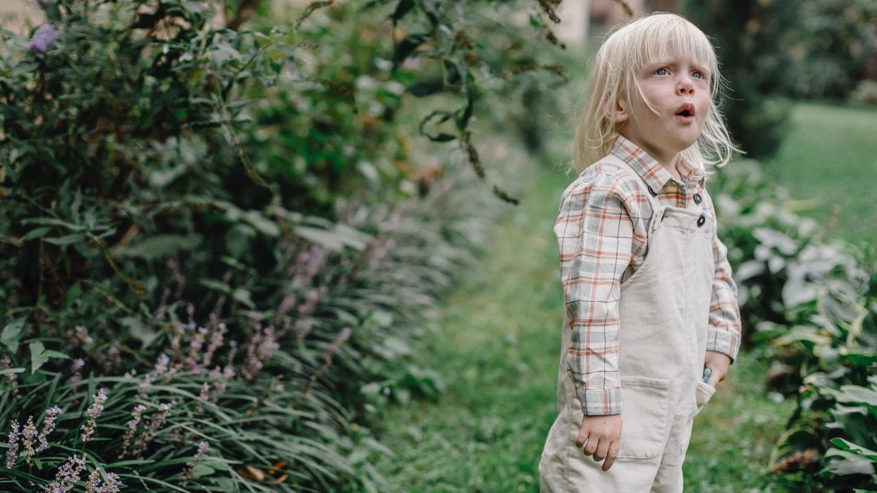 The Shocking Revelation about Children Soft Skills