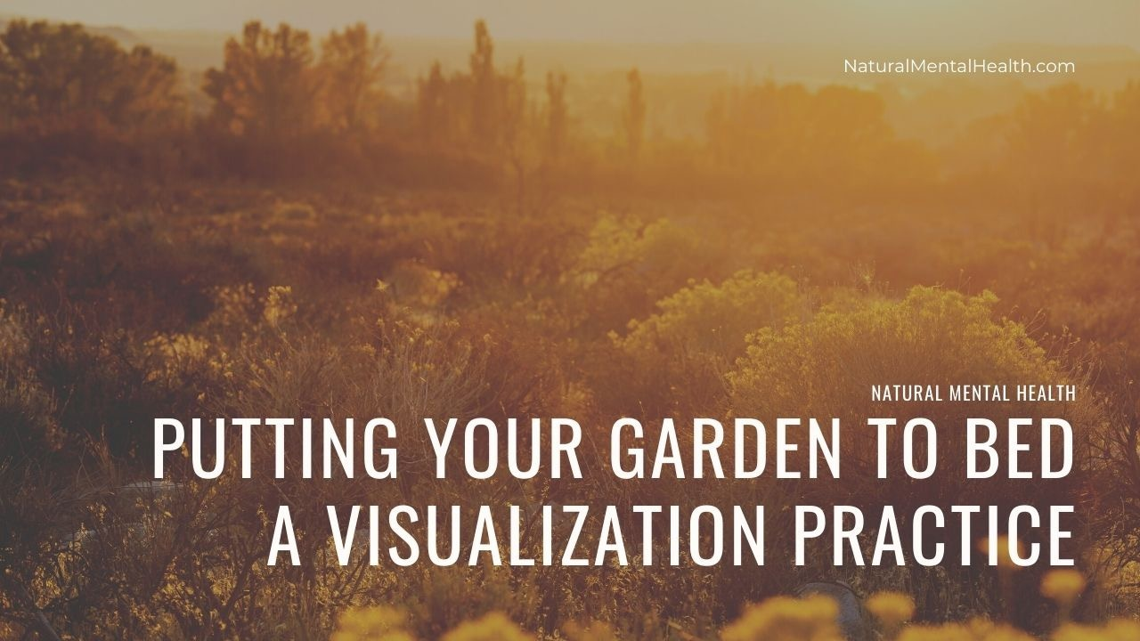 Putting your garden to bed: a guided visualization. | Image shows a the sun setting over an autumnal landscape casting gold over the entire image.