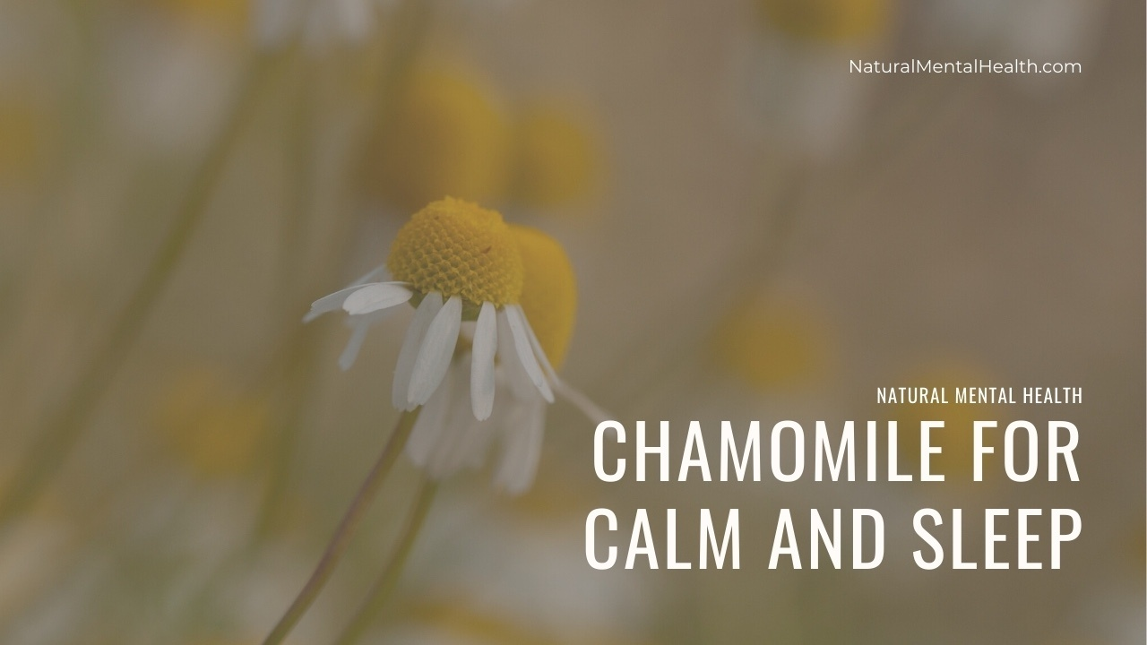 Chamomile flower; a yellow center with small white pedals. Text reads: Chamomile for Calm and Sleep.