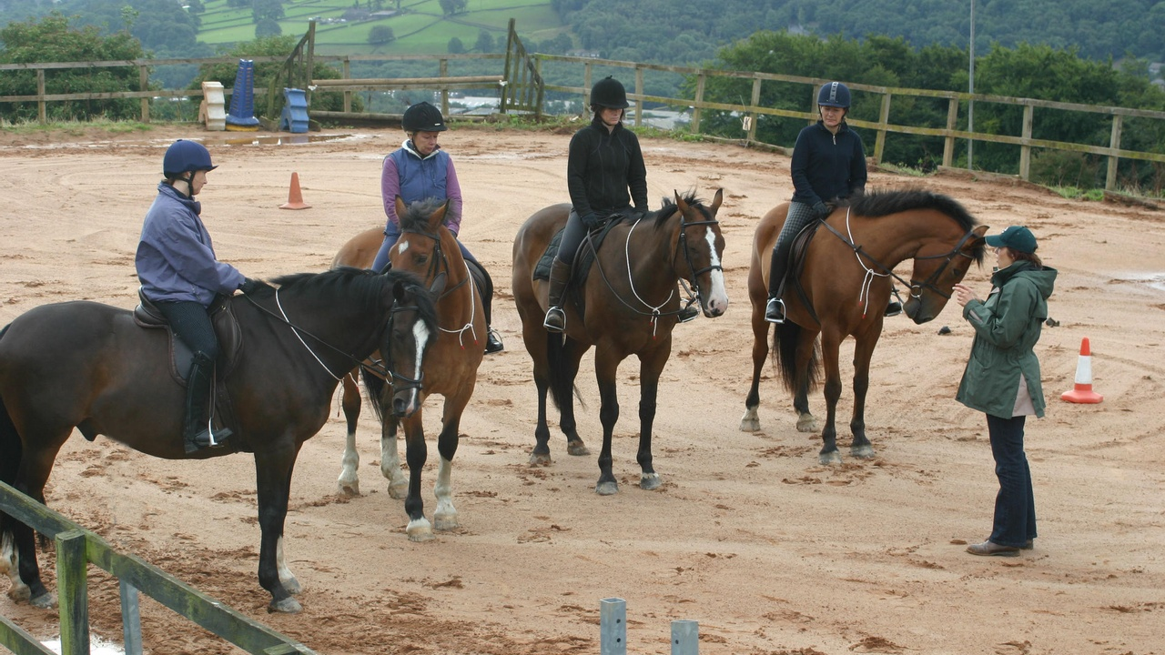 Equiculture having lessons