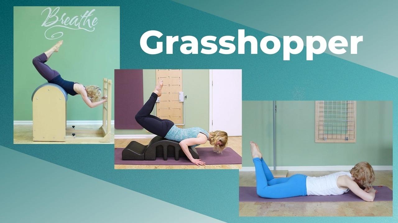 grasshopper exercise