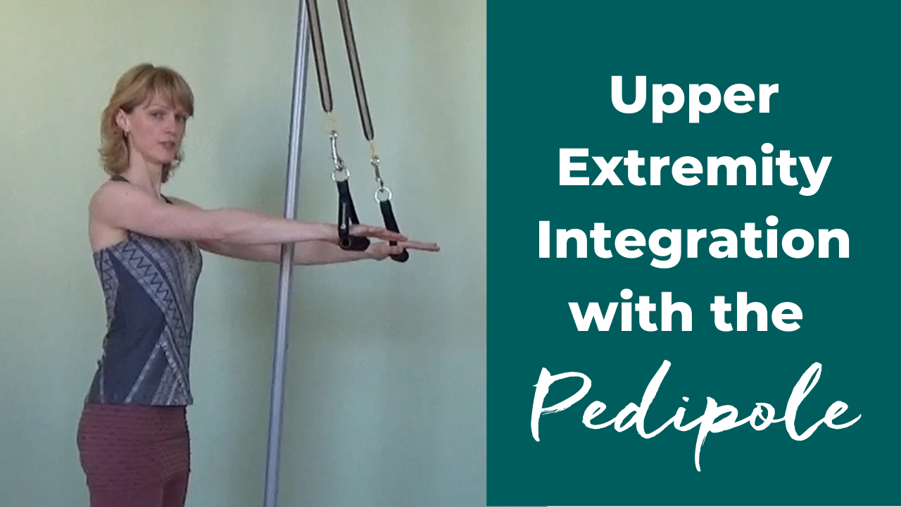 upper extremity core integration with the Pilates pedi pole