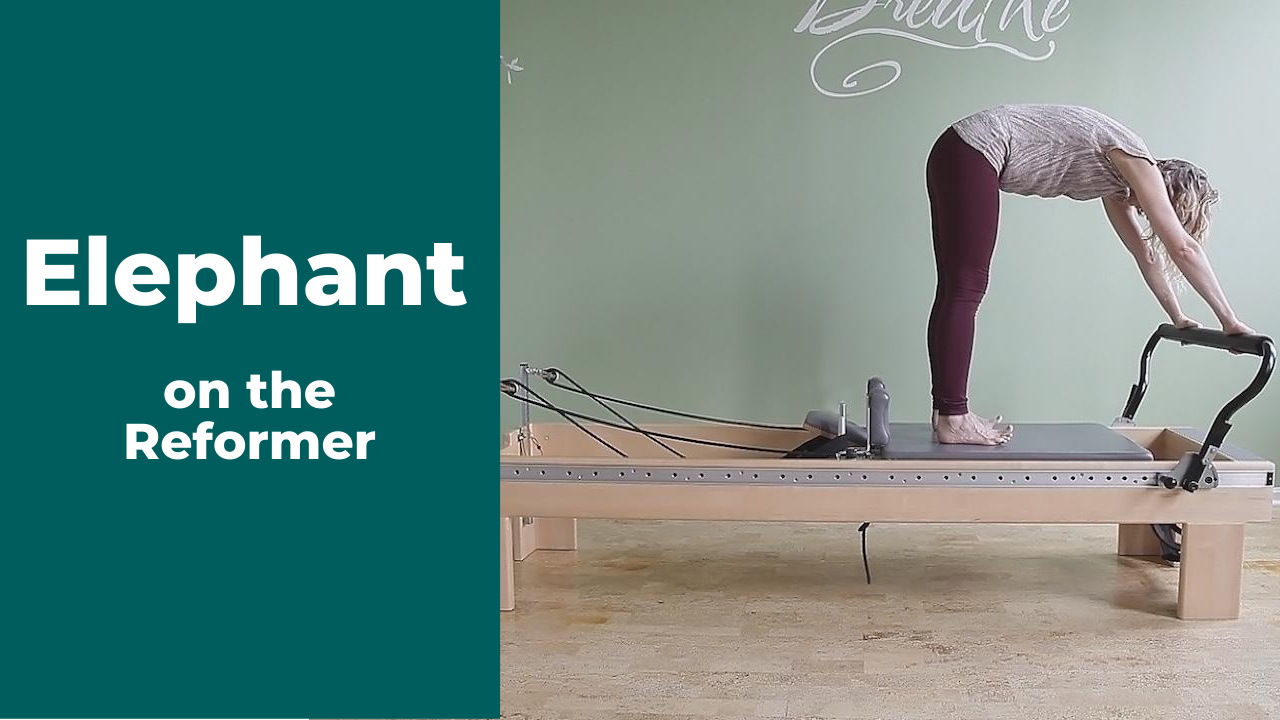 Best Way to Improve Alignment for Elephant on the Pilates Reformer