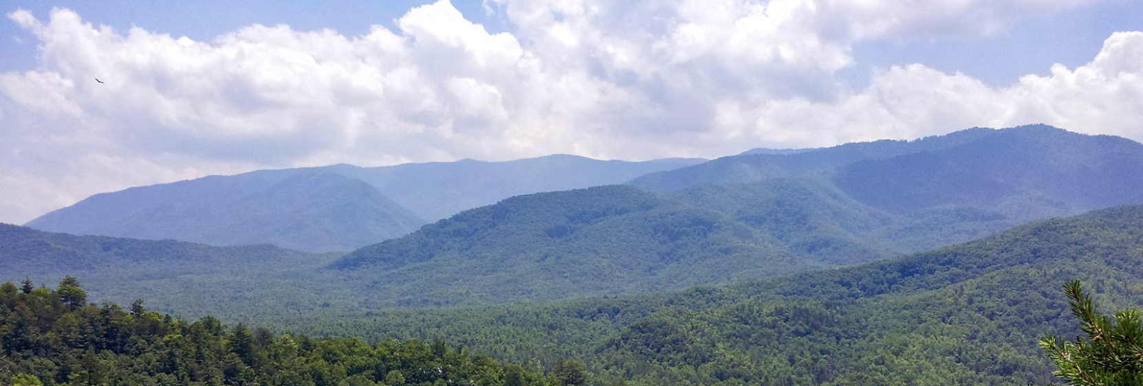 Tennessee smoky mountains real estate