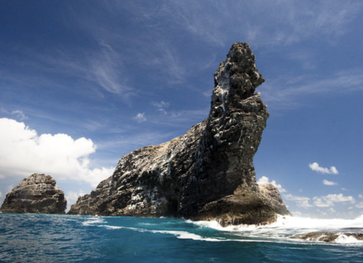Hawaii marine park wholesaling