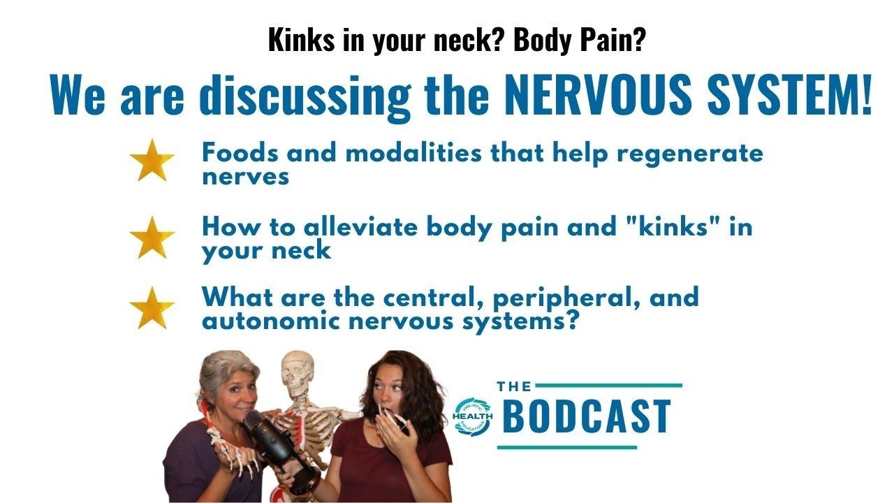nervous system, multiple sclerosis, regenerate your nerves