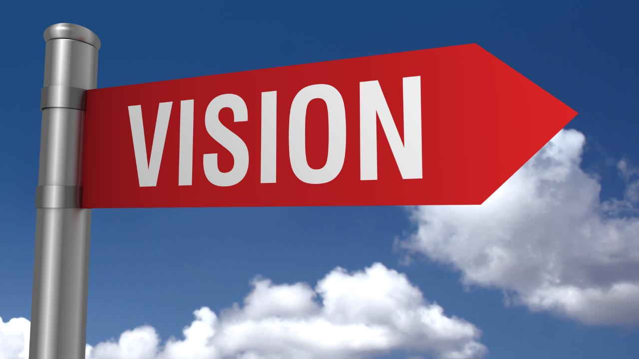 vision, holistic, health coach