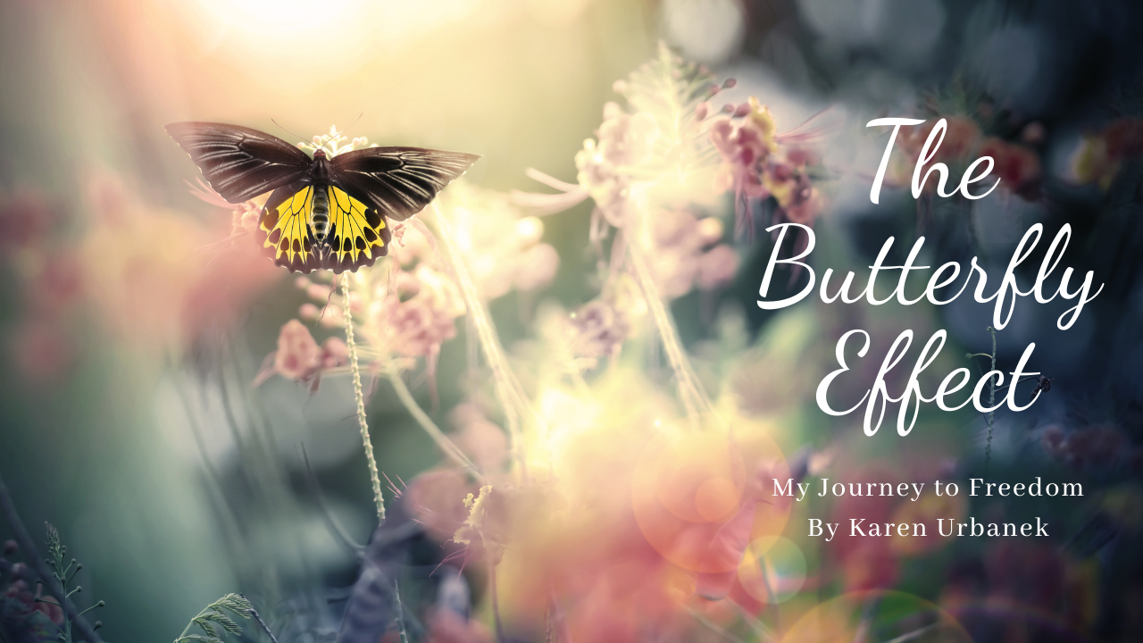 butterfly effect, journey to freedom, strong women