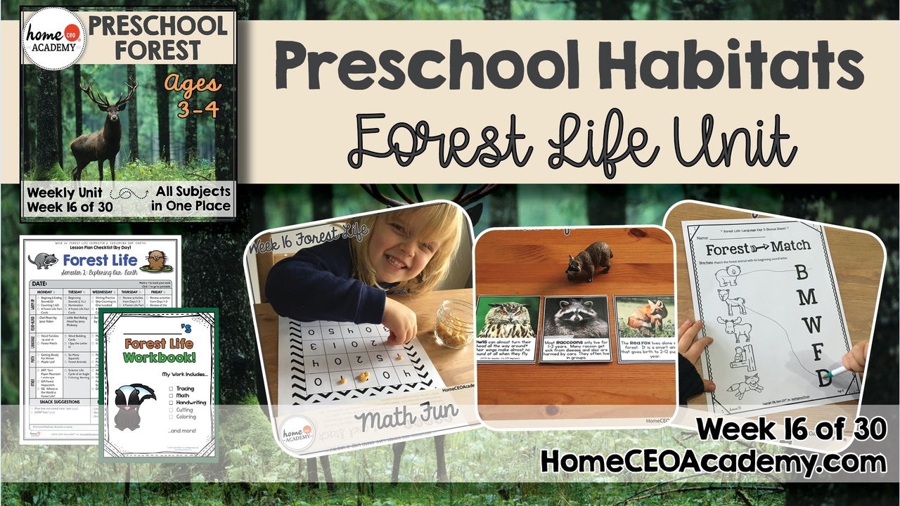 Compilation of images depicting pages and activities in the Forest themed week of the Home CEO Academy preschool homeschool curriculum Habitats Unit.