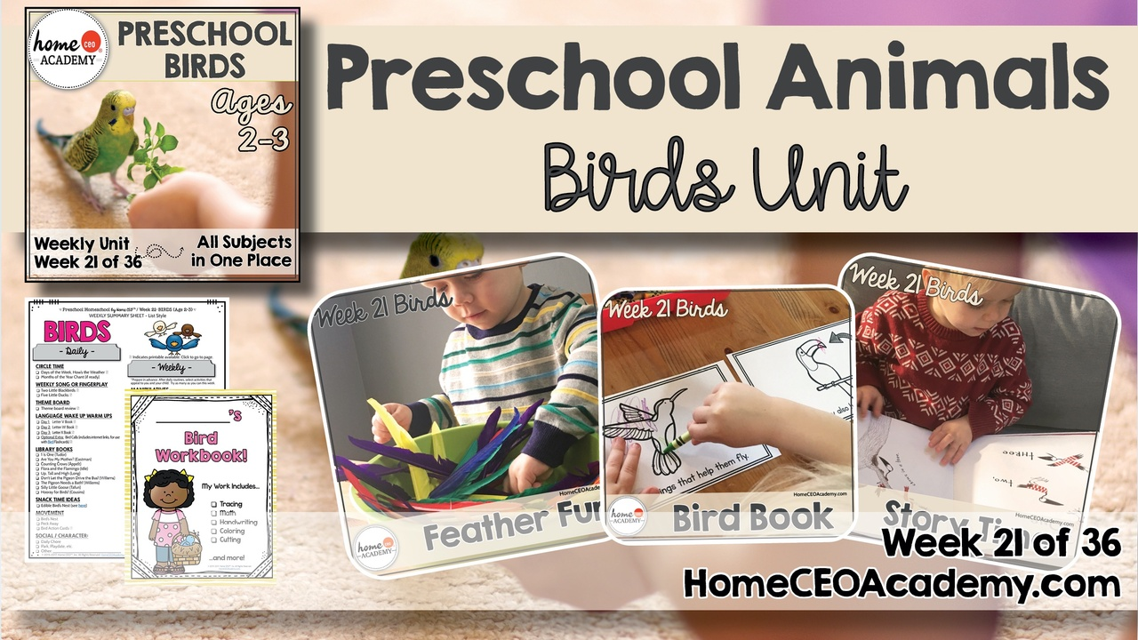 Compilation of images depicting pages and activities in the birds themed week of the Home CEO Academy preschool homeschool curriculum Animals Unit.