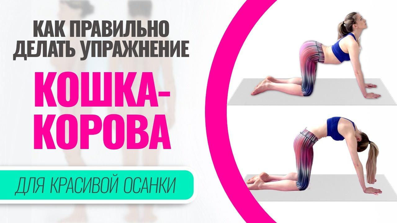 «Кошка-корова» — упражнение для здоровой спины и правильной осанки