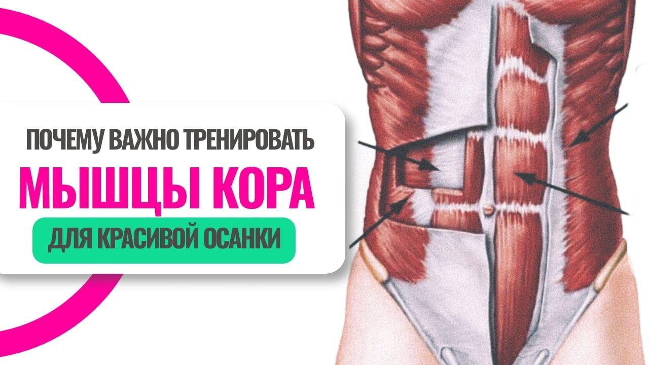Как правильно тренировать мышцы кора, чтобы исправить осанку