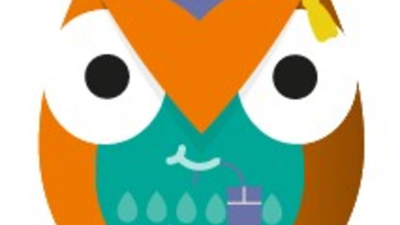 L69144thtdarp6fvuk0c amber training owl digital