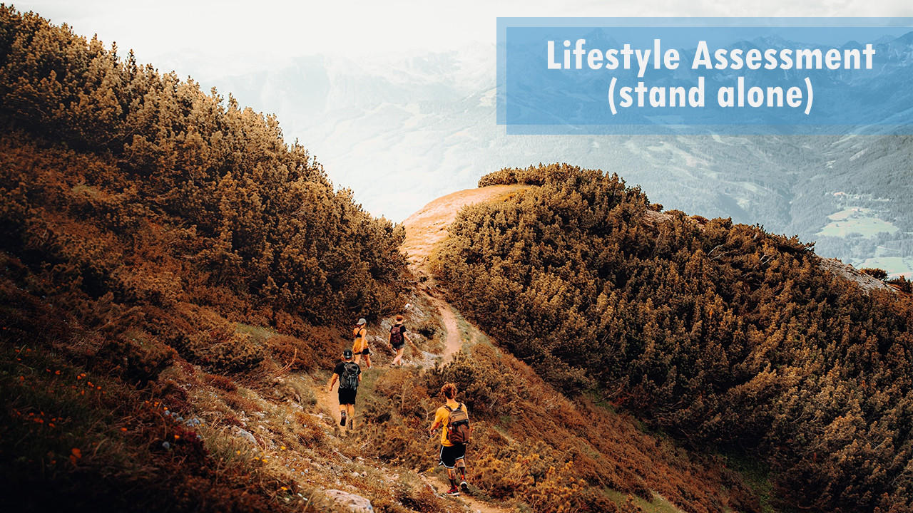 Znnnmpzru6anx7afihbg dec package lifestyle assessment stand alone