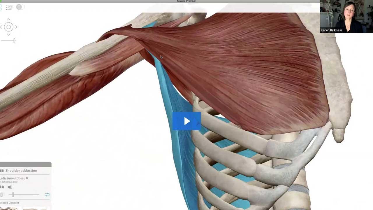 96z9ftohrjcehrjbpinq shoulder filament 15