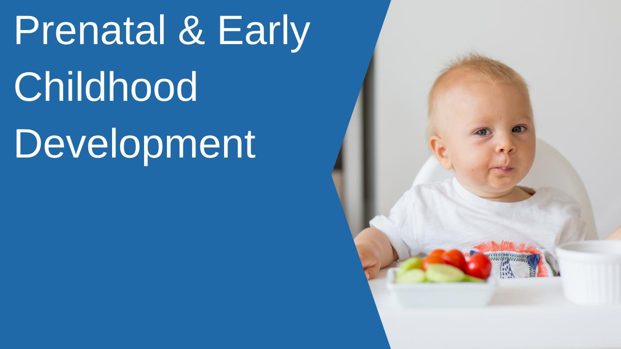 Vrlh3wratou8kfqicxzr prenatal early childhood development
