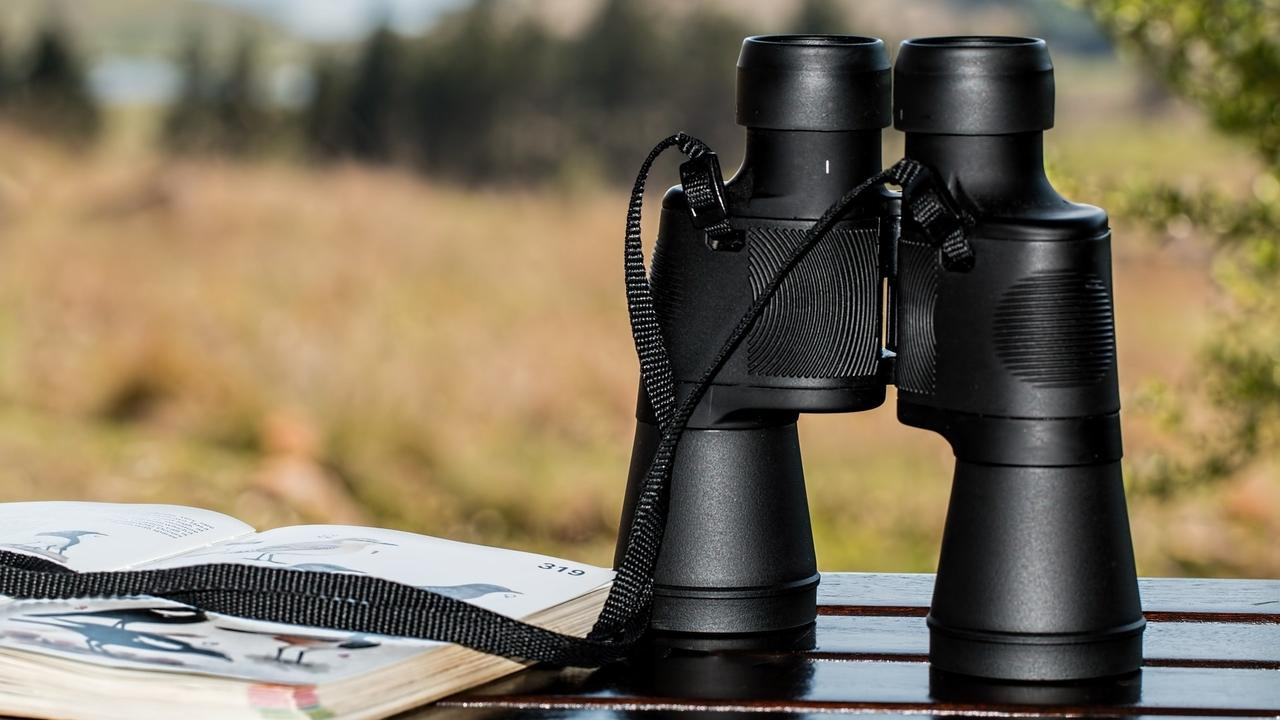Mpznwlg0rngmxvofvzbs binoculars 995779 1920